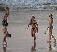 Beach Supporters of Acrobat